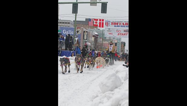 NOME MUSHER— Nils Hahn leaves the start line in Anchorage during the ceremonial start on Saturday.