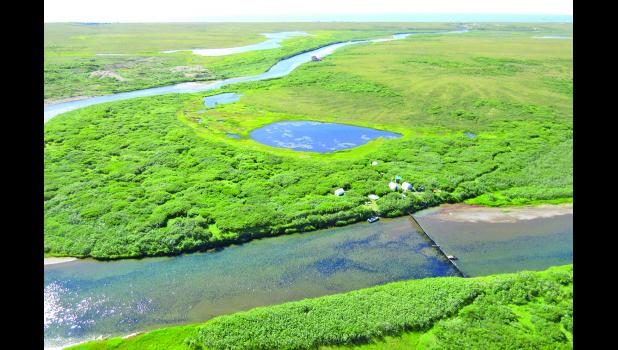 TEEMING WITH FISH— 430,000 pinks made it through the Nome River weir as of Monday, July 25.